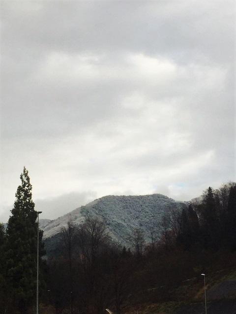冬リハーサル